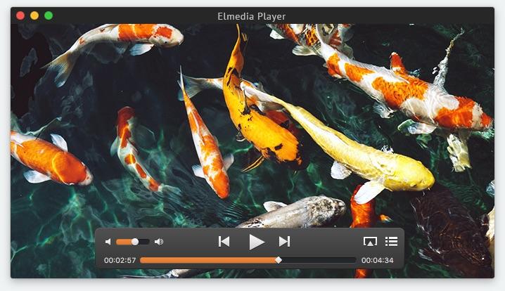 best free video player -ELM